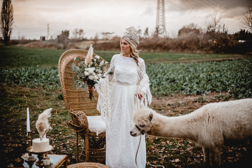 Alpaca Bridaleditorial 28
